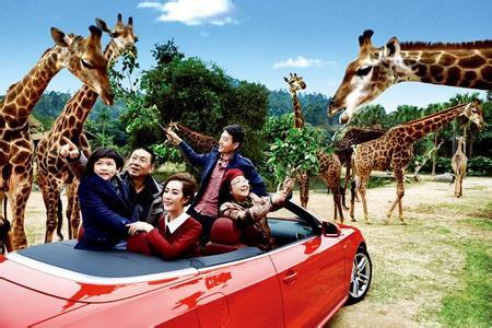 广州长隆野生动物园双飞4日游